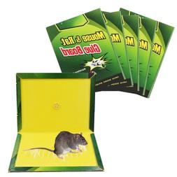"10 PC 10"" x 7"" Mouse Rat Glue Sticky Mice Traps Large Rodent"