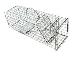 Tomahawk Live Trap 103F - Flush Mount Squirrel Trap with One