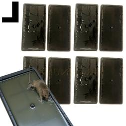 2 To 16 Pcs Disposable Glue Traps for Mice Rats Mouse Super