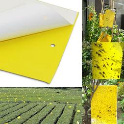 20/50/100 Pc Sticky Fly Trap Paper Yellow Traps Fruit Flies