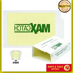 Catchmaster 72MAX Pest Trap, 72 Glue Boards, White