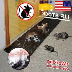 big size mice mouse rodent glue traps