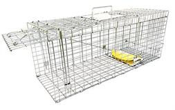 Ranger Products Large Collapsible Humane Live Animal Trap Pe