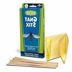 BioCare Gnat Stix Indoor Traps for Fungus Gnats and Aphids,