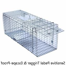 Humane Live Animal Trap Cage Large Collapsible Heavy Duty Ar