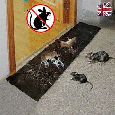 Large Size Mice Mouse Rodent Glue Traps Super Sticky Rat Sna