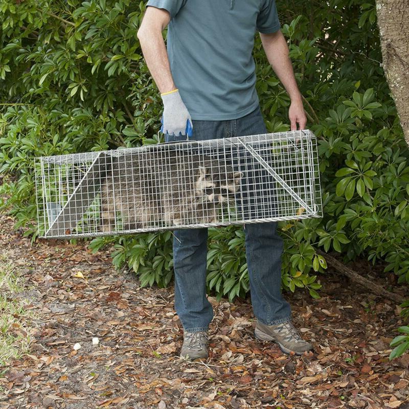 Havahart Two-Door Opossum Cage