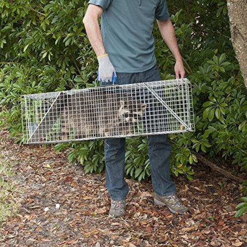 Havahart 1050 Two-Door Large Raccoon Opossum Cage Trap