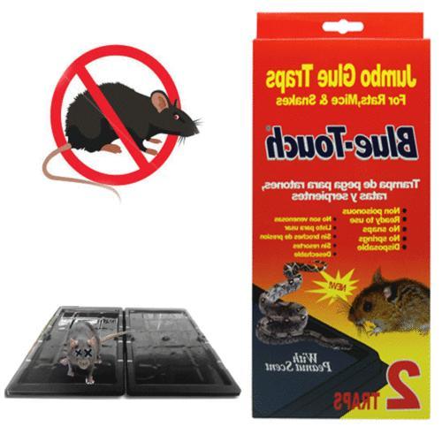2 pc jumbo glue sticky traps rat