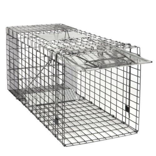 "32"" Steel Rodent Rat Raccon"