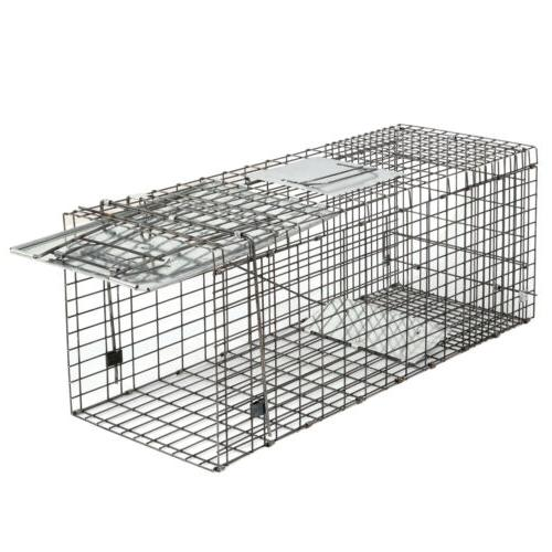 "32"" Humane Animal Trap Steel for Rodent Raccon"
