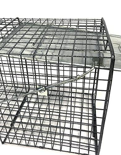 Neocraft 40050 Animal Trap,