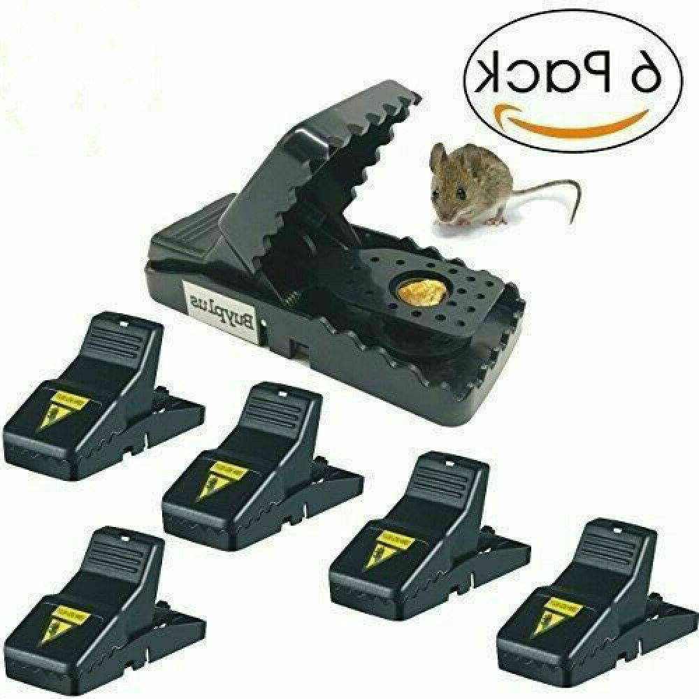 6 pack mouse traps small mice traps