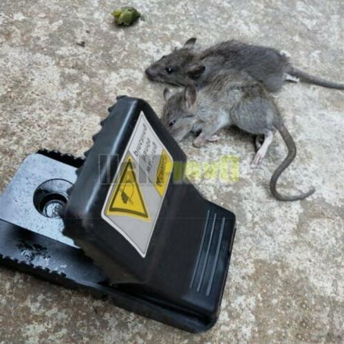 2PCS Traps Pest Control Reusable
