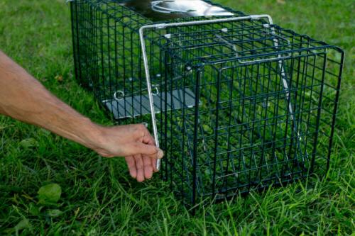 Animal Cage High Sensitivity Cage Hunting