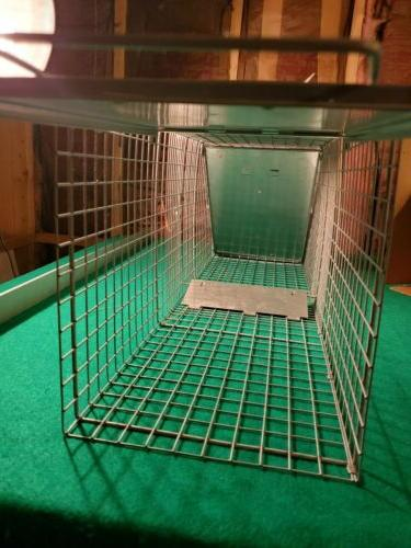 Havahart Trap 1084 Easy TRAPS RACOON