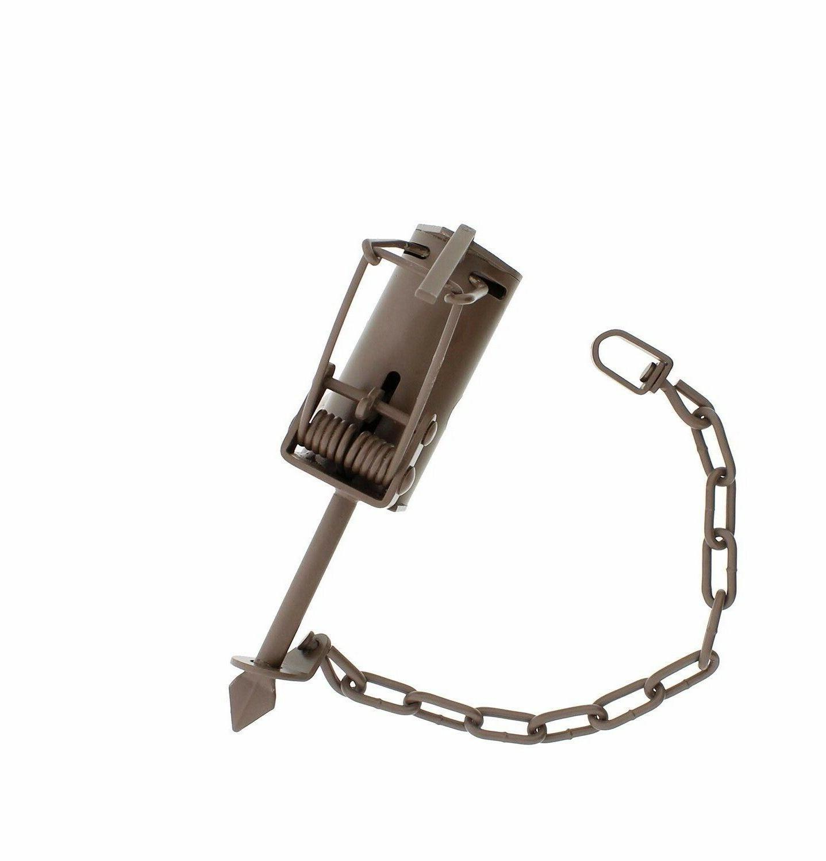 dog proof traps dp raccoon trap raccoon