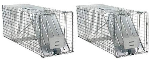 door humane animal trap