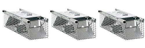 door live animal trap ideal
