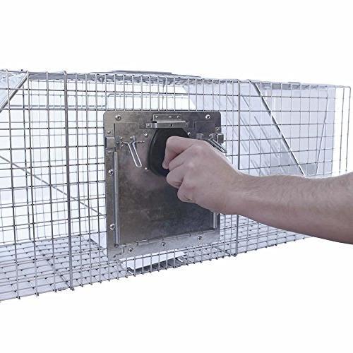 Havahart Large 2-Door Safe Humane Animal Cage for Raccoons,