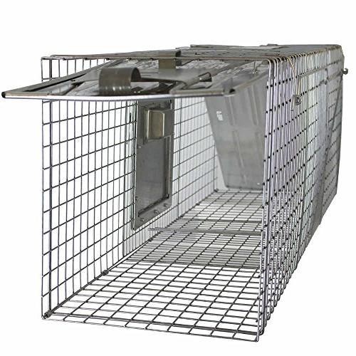 Havahart 998 2-Door Safe Humane Animal Raccoons,