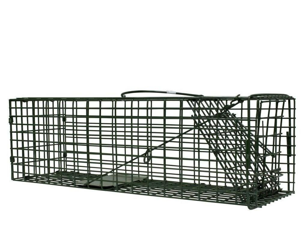 duke live catch cage traps 5 x5