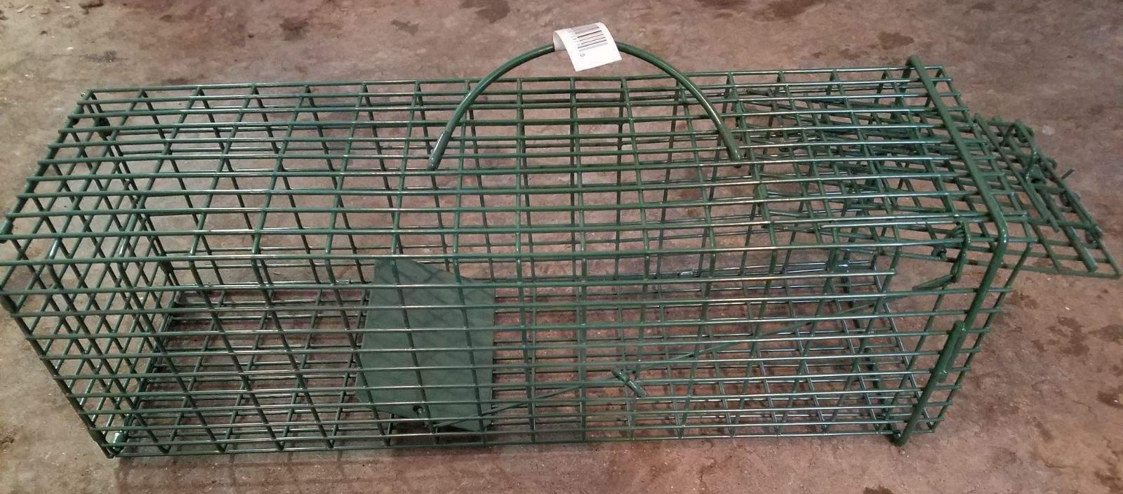 duke squirrel live cage trap chipmunk rat