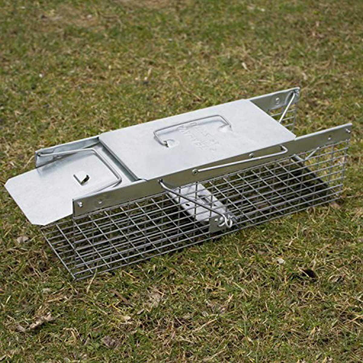 Havahart 2-Door Live – Ideal catching squirrels, ch