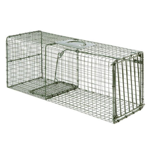heavy duty large animal live trap cage