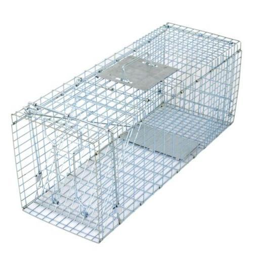 Humane Animal Trap 32x12x12 Steel Control Skunk Rabbit Opossum