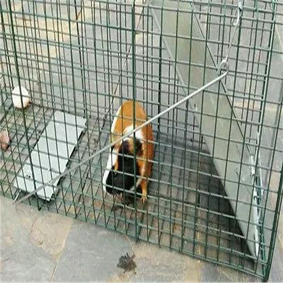 Humane Animal Steel Cage Control Skunk