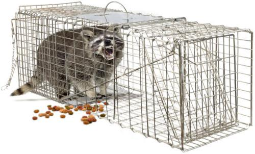 Humane Animal Steel Cage Live Rodent Control Rabbit Opossum