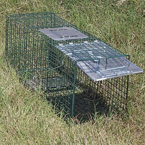 Sawan Humane Trap Cage Live Rodent Rabbit Opossum