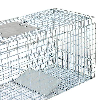 "Humane Animal Control Cage 32""x12.5""x12"" Raccoon Skunk"