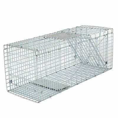 "Humane Control Cage 32""x12.5""x12"" Raccoon"