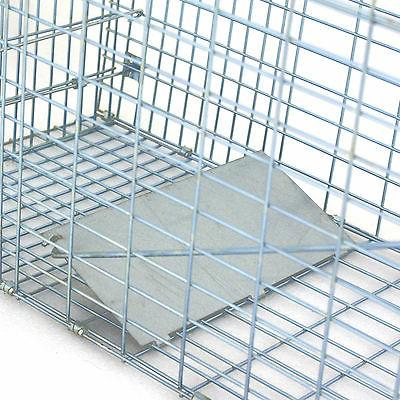 "Humane Small Control Steel Trap 32""x12.5""x12"""