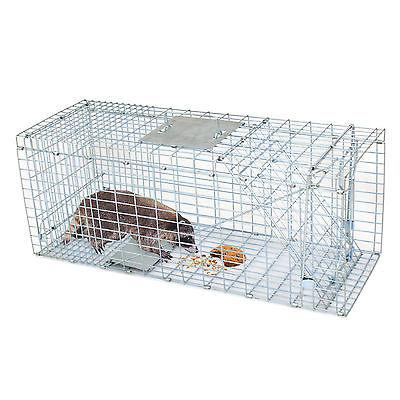 "Humane Small Live Animal Control Steel Trap Cage 32""x12.5""x1"