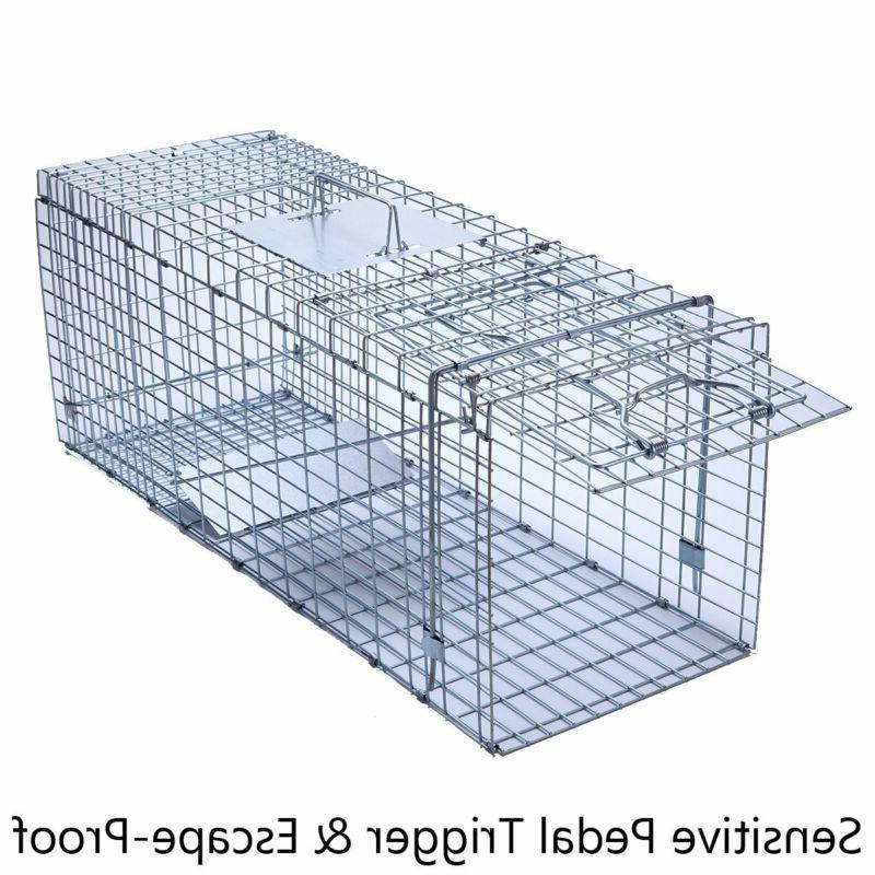 humane live animal trap cage large collapsible