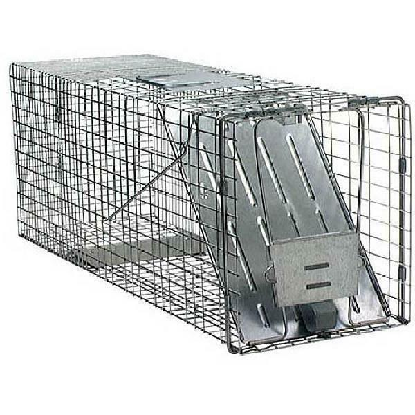 large 1 door animal trap 32 inch