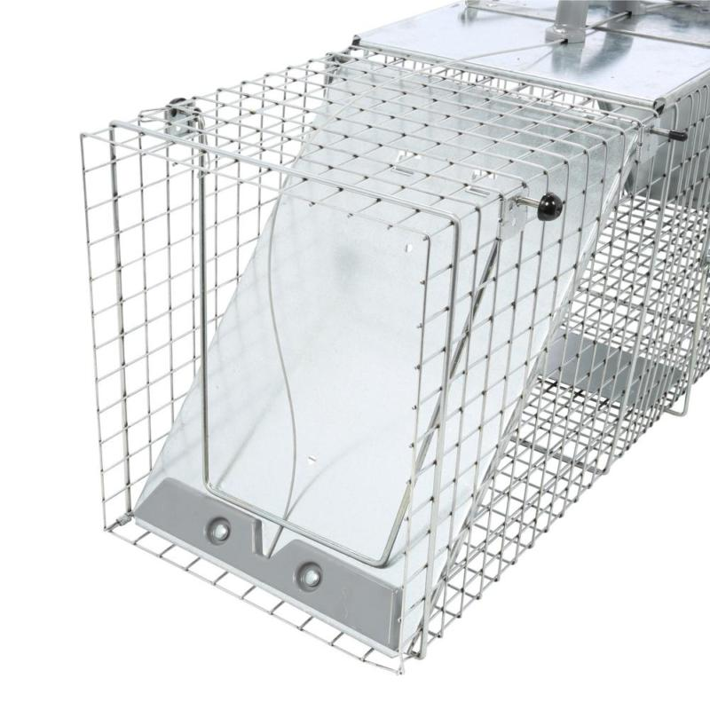 Large Live Animal Cage Trap for and