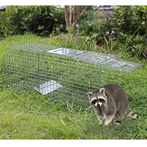 "Twinkle Star Live Cage 32"" 11"" x 12.5"" Release for Squirrel Groundhog Raccoon Gopher Opossum Cats Rabbits"