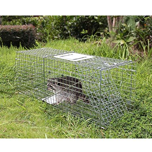"Twinkle 11"" Release for Groundhog Raccoon Chipmunks Opossum Cats Rabbits"