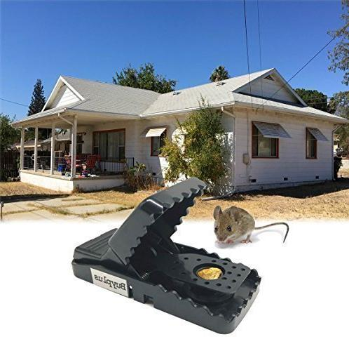 Buyplus Trap - Rat/Mice Traps Humane Snap Killer(12Pack) Effective Catcher, Safe Around