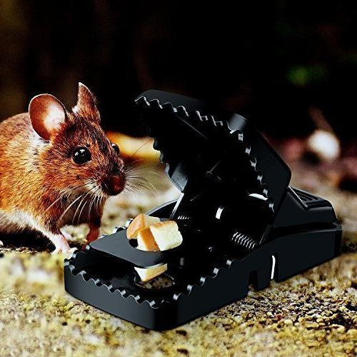 Buyplus Mouse Trap Rat/Mice That Work Humane Snap Rodent Killer(12Pack) Effective and Catcher, Around