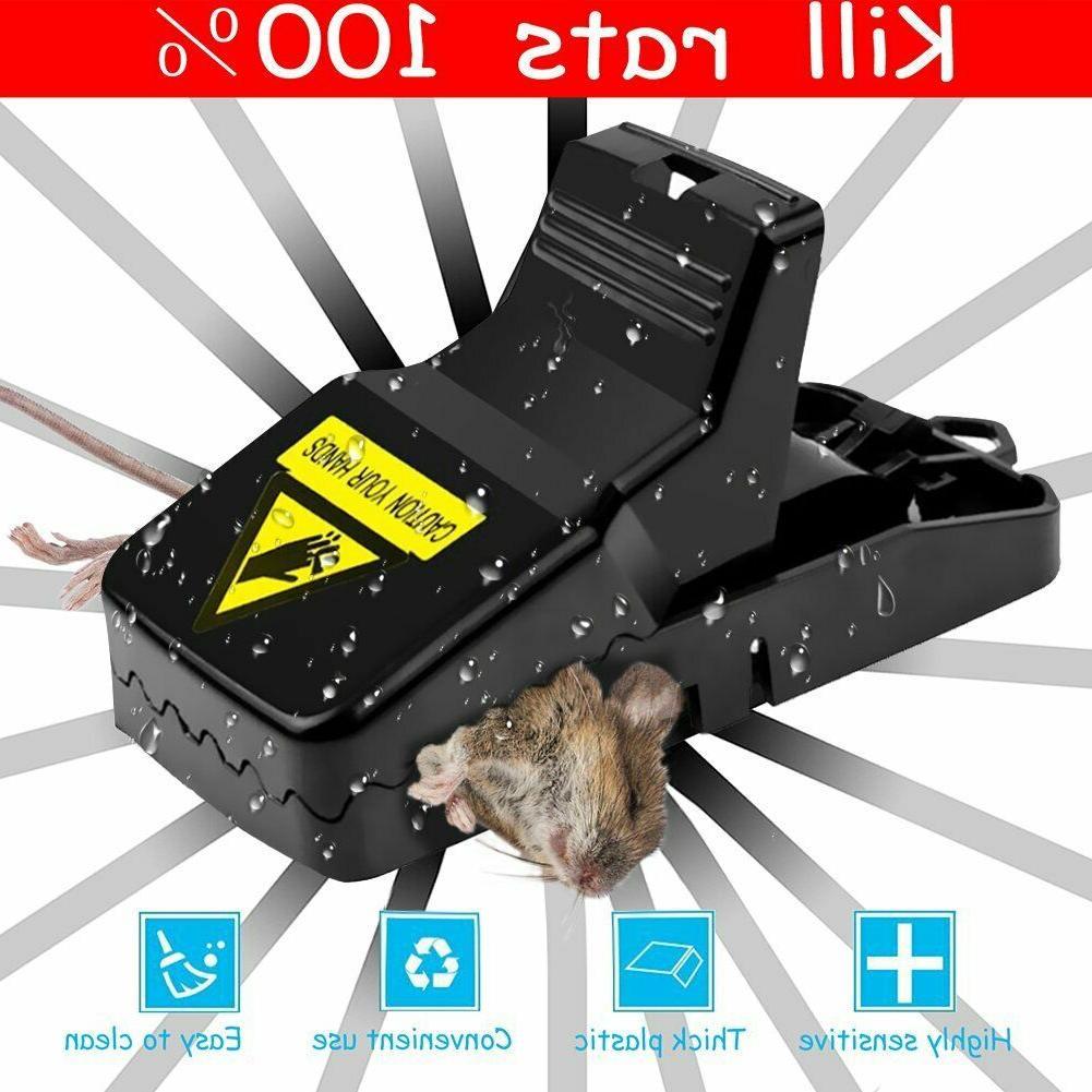 Mouse Squirrel Killer 6PC