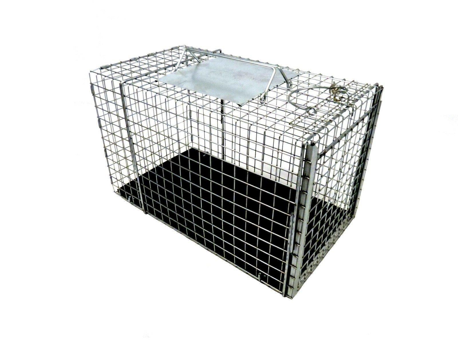 neighborhood cat transfer cage