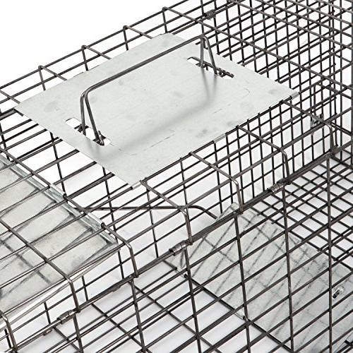 """HomGarden Live 32""""x12.5""""x12"""" Catch Rodent Cage Groundhog, Raccoon, Nuisance Rodents"""