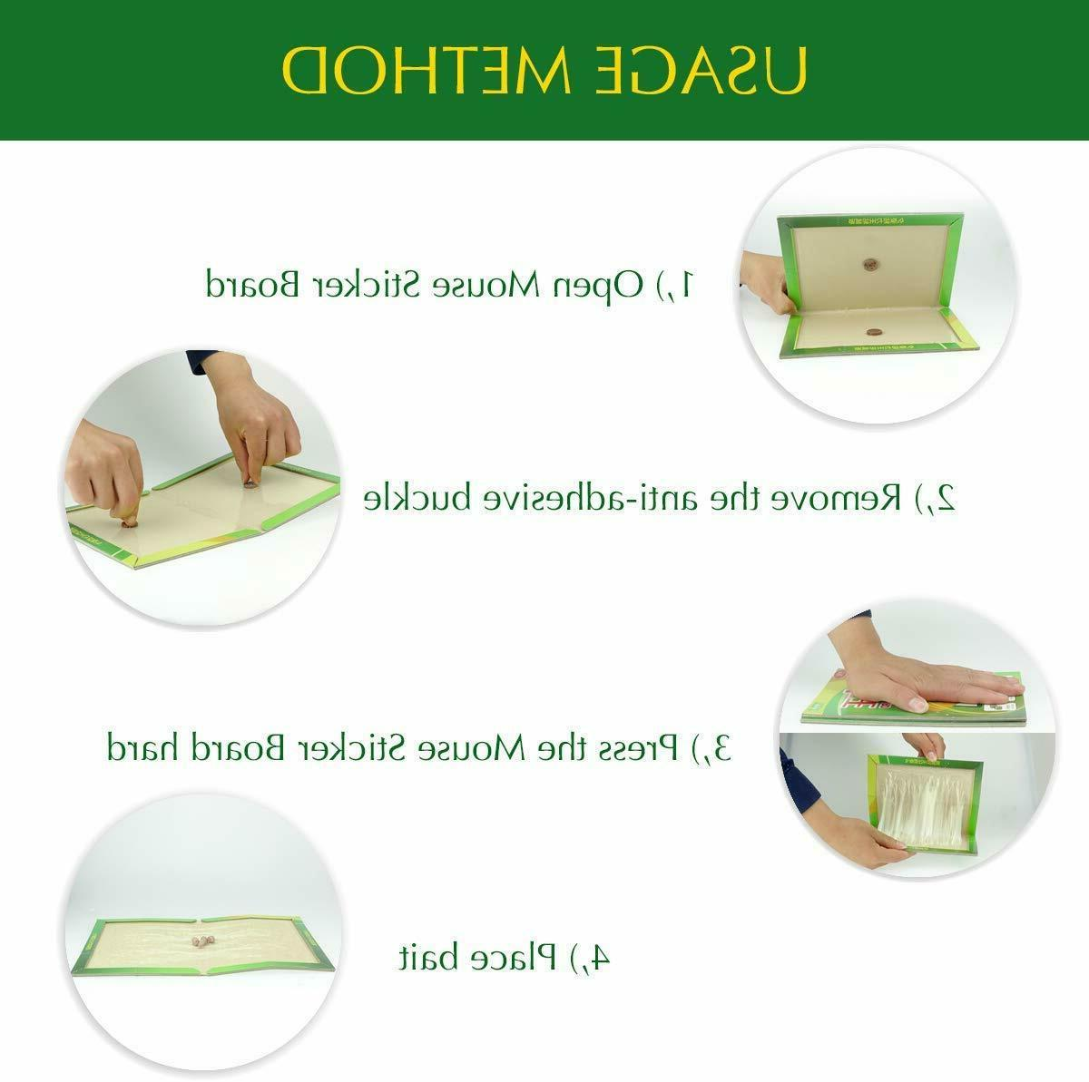 Rat Glue Traps Rodent Boards Tool