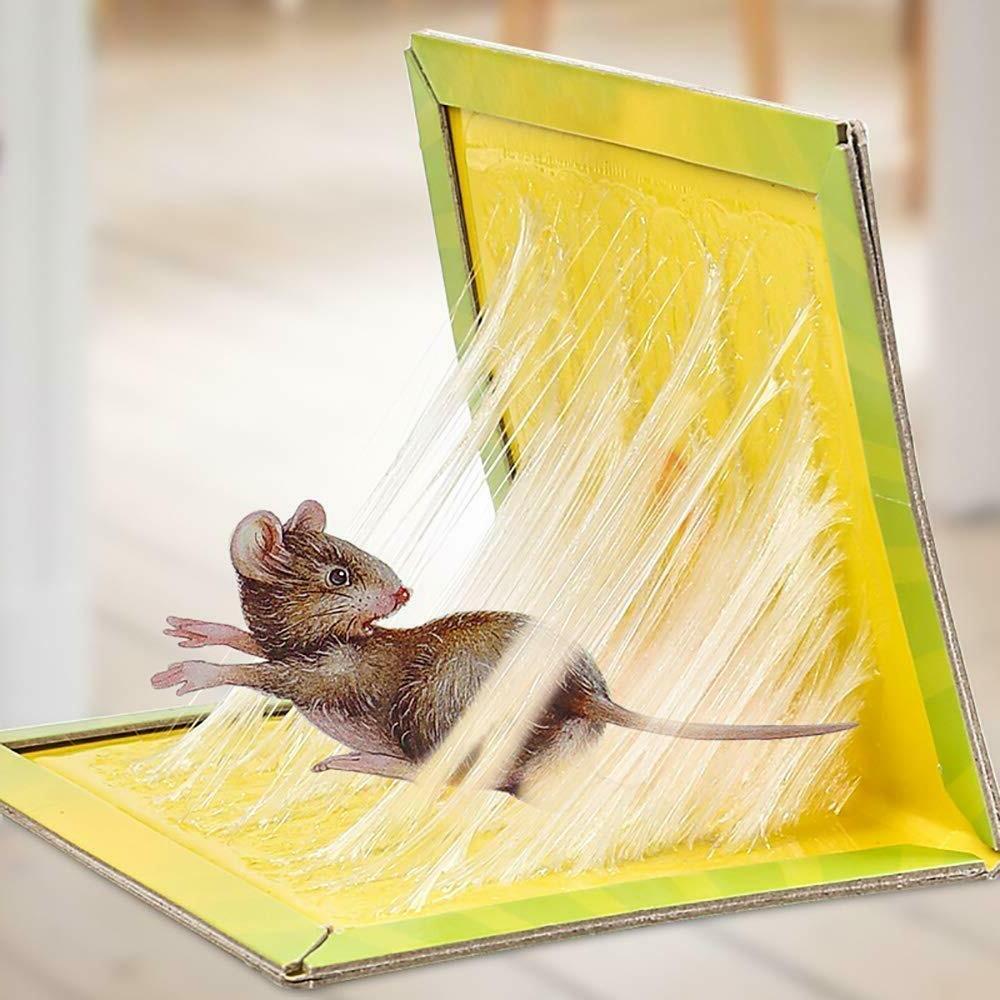 rat trap snare mouse glue snare traps