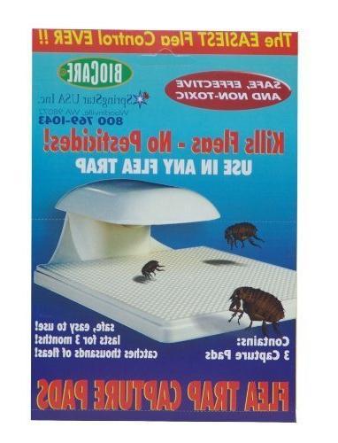 s103 biocare flea trap capture